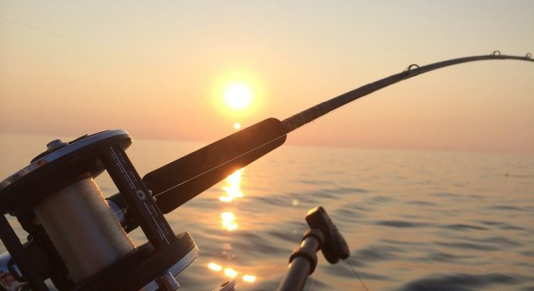 5 Best Fishing Rod And Reel Combo Kits For A Beginner