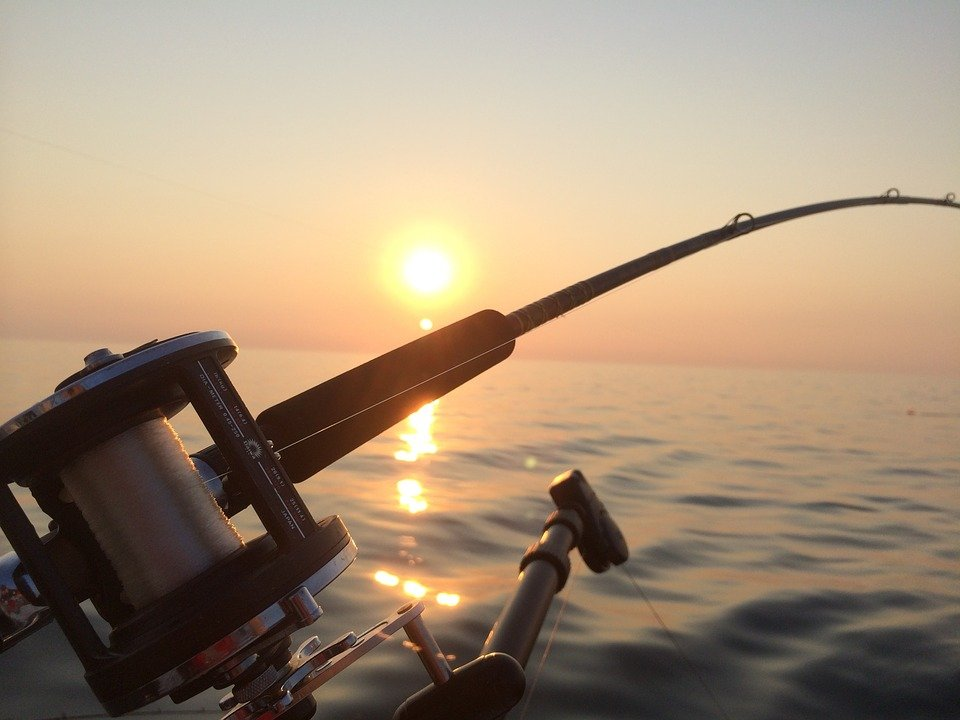 top rated fishing rods and reels for amateurs